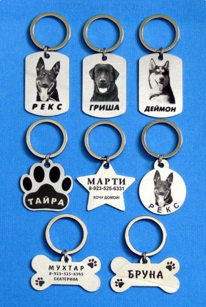 адресники для собак и кошек 1